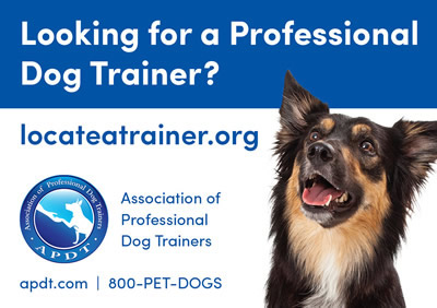 APDT Trainer Search